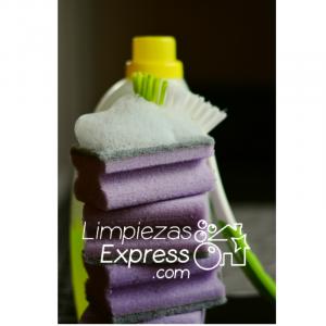 Los imprescindibles para realizar la limpieza, Los peligros y cuidados en la limpieza, artículos para limpieza
