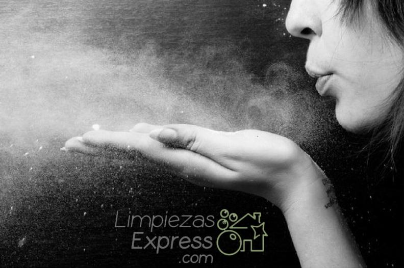 cómo limpiar el polvo, como limpiar el polvo correctamente, como quitar el polvo