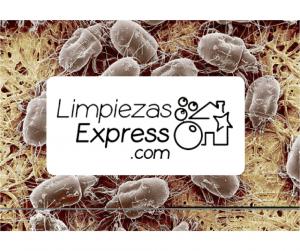 enfermedades por el polvo, enzimas de peptidasa, enfermedades respiratorias por el polvo