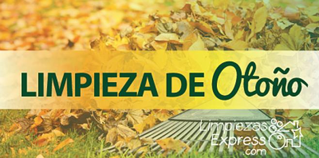 limpieza efectiva en otoño, limpieza a fondo en otoño, limpieza integral en otoño