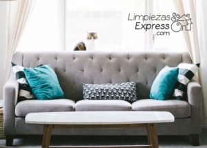 Limpieza de sofá