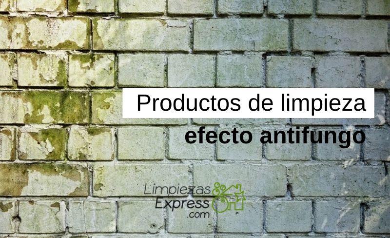 Productos de limpieza efecto antifungo