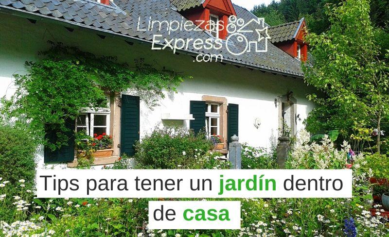 Tips para tener un jardín dentro de casa