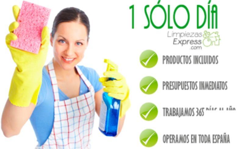 limpiamos tu casa en 1 solo dia