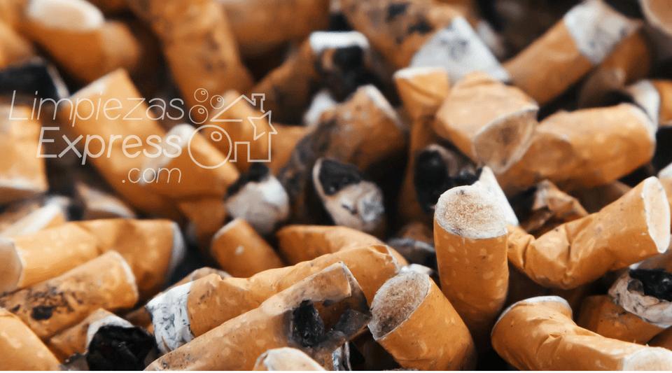 Consejos pr cticos para quitar los malos olores en casa - Malos olores en casa ...