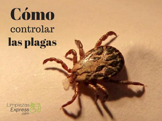 como controlar las plagas