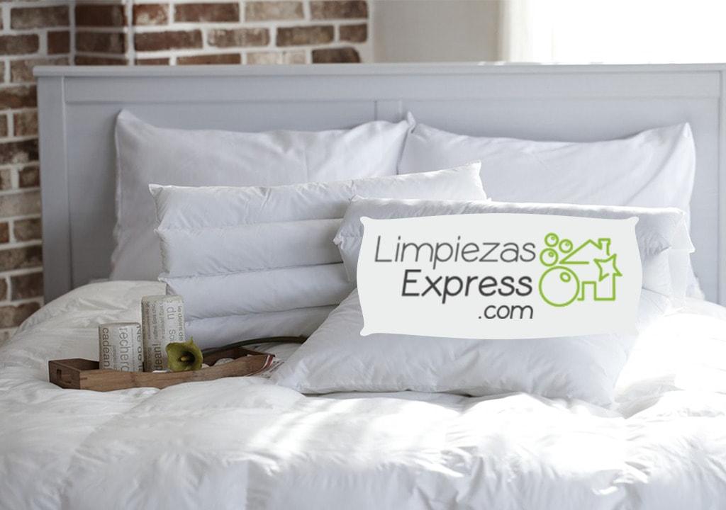 controlar plaga de chinches en la cama