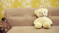 cómo sé si son chinches, chinches o pulgas, chiches en el sofá