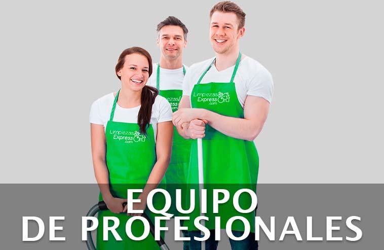 equipo de profesional de la limpieza de su vivienda