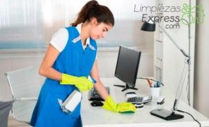 limpieza por horas, profesional limpieza por horas