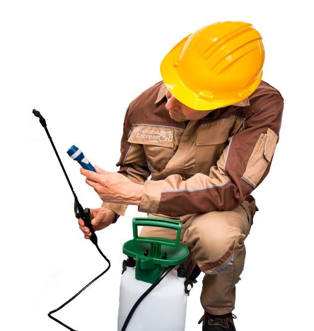 fumigacion profesional de viviendas, eliminación de plagas
