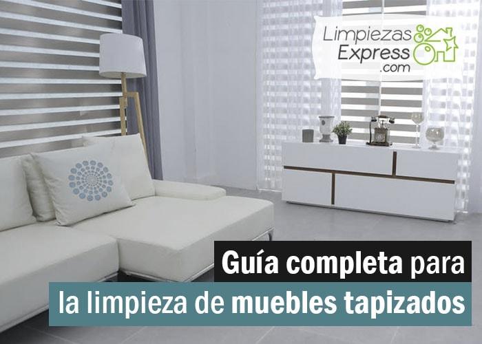 Gu a completa para la limpieza de muebles tapizados for Limpieza de muebles