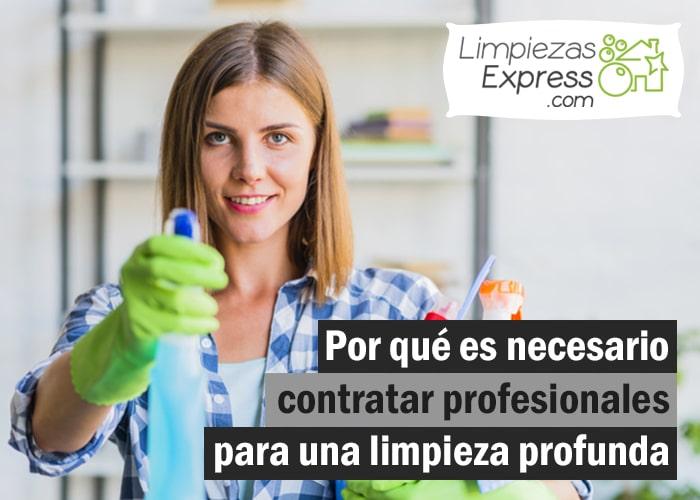 contratar profesionales para una limpieza profunda