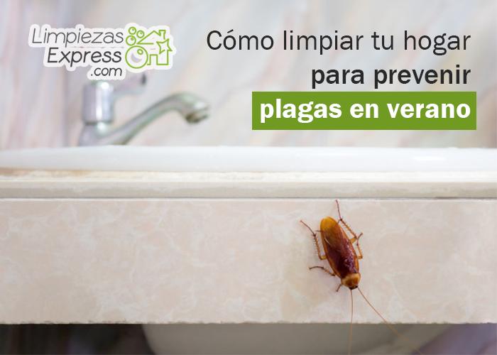 Limpieza para prevenir plagas