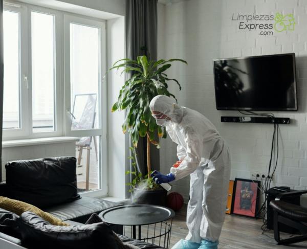 limpieza de casas por defunción